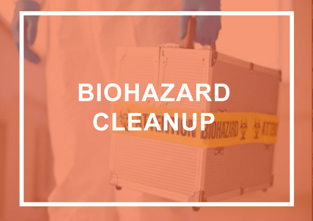 Biohazard Cleanup